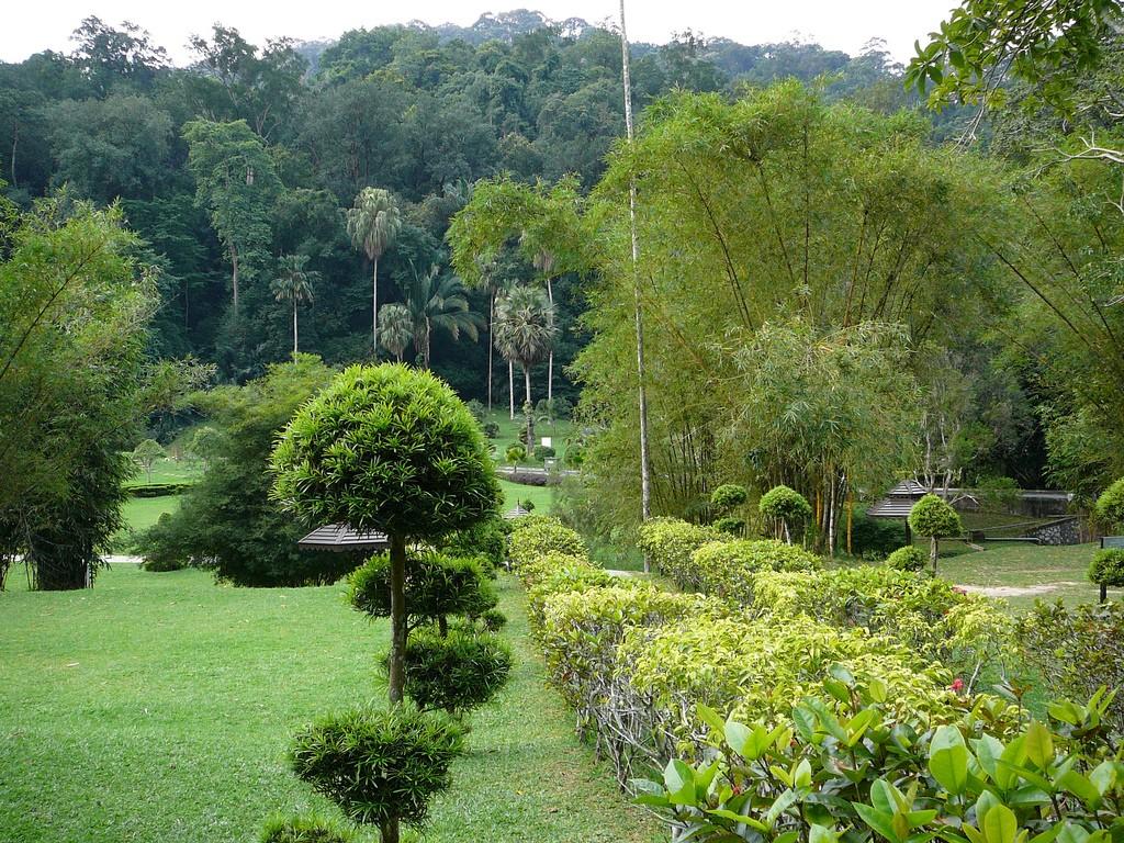 Penang Botanical Gardens|©Mikkot02/Flickr