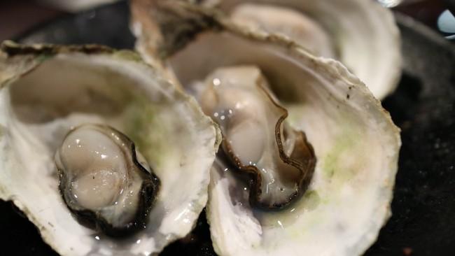Oysters | jsbaw7160/Pixabay