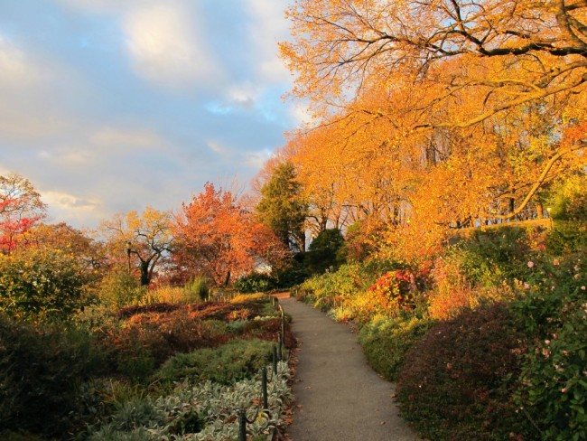 10 Peaceful Garden Escapes In Nyc