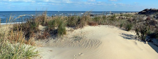 The Best Walks In The Belgian Dunes