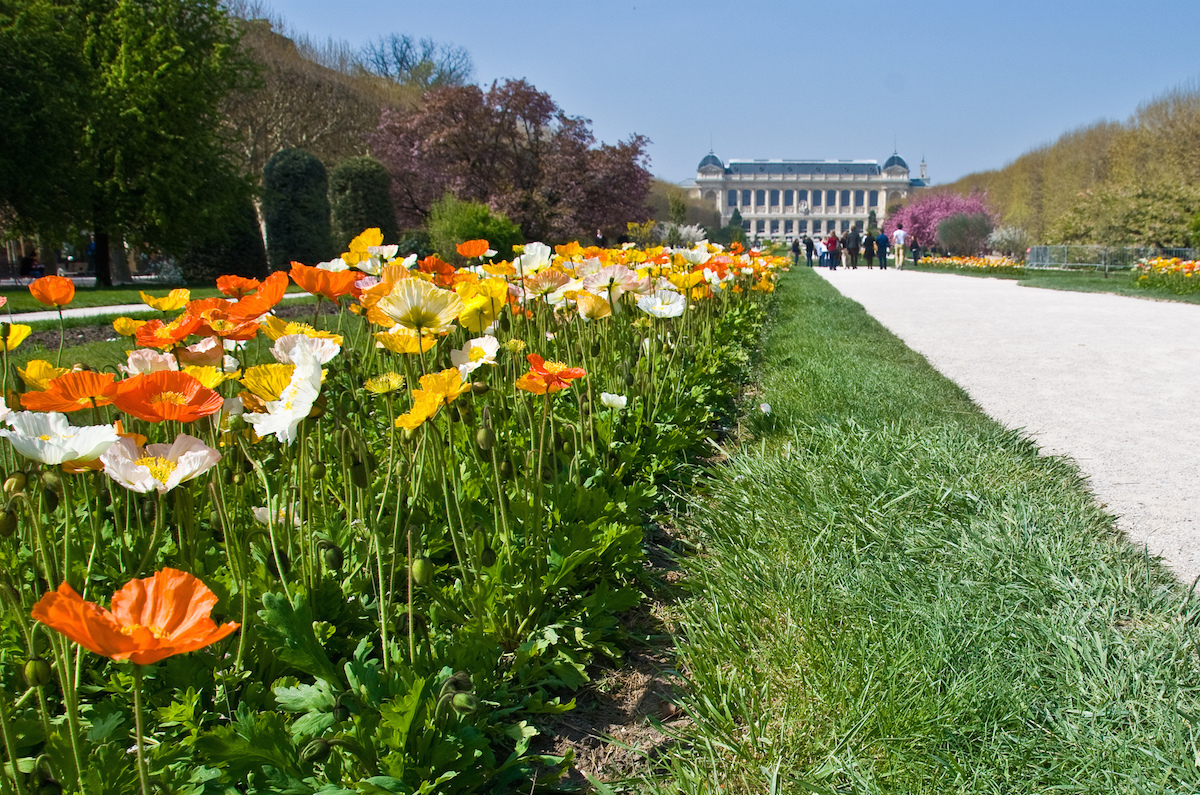 10 quiet places to escape to in paris for Paris jardin plantes