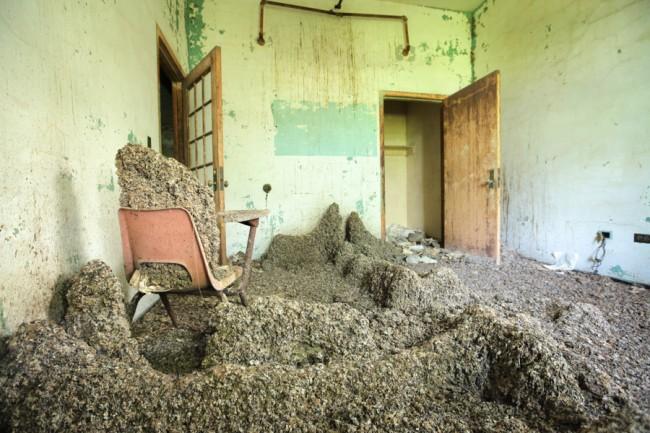 Abandoned NYC | © Will Ellis.jpg