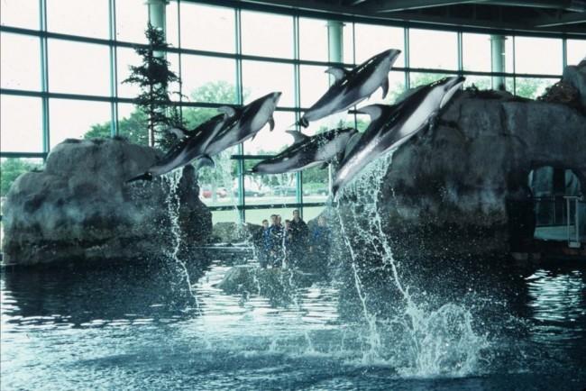 The Shedd Aquarium | © Smart Destinations/Flickr