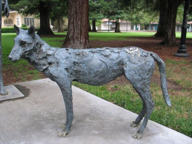 Photo 5_Things To Do In Santa Clara