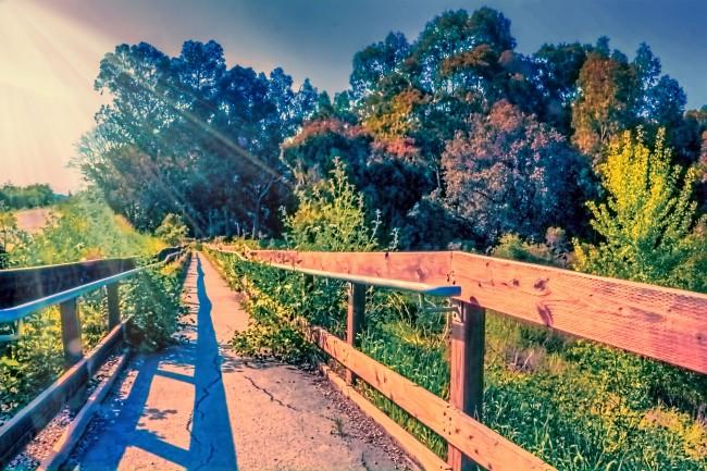 Photo 6_Things To Do In Santa Clara