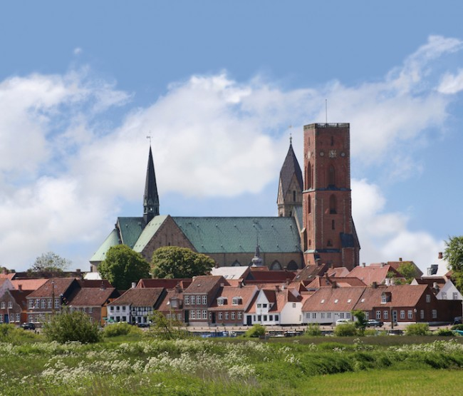 Ribe Domkirke manip | Courtesy of VisitRibe