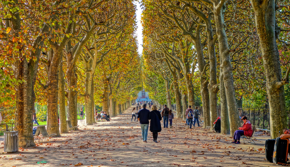 The best places to run in paris for Culture des jardins
