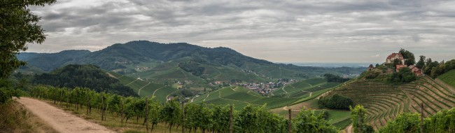The Wine Trail in Durbach | © Schwarzwert Naturfotografie/Flickr