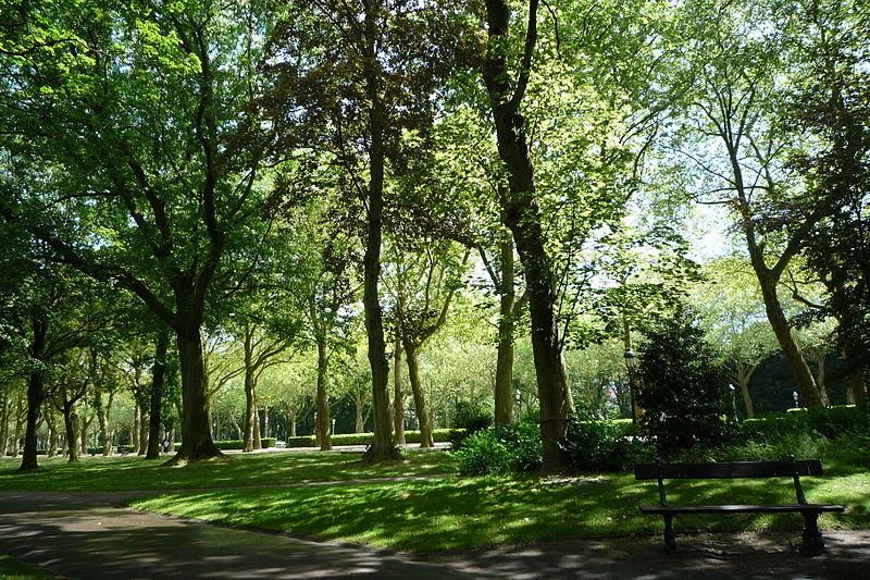 Arbres au Parc Elisabeth de Bruxelles|© Soboky/Wiki Commons