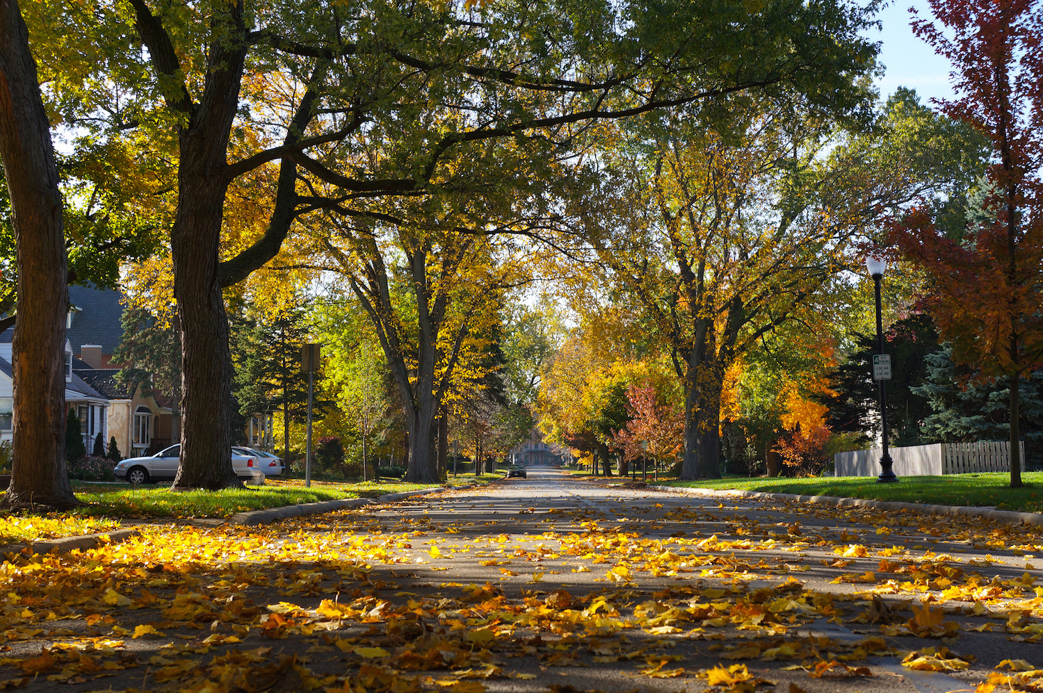 10 things to see and do in naperville illinois