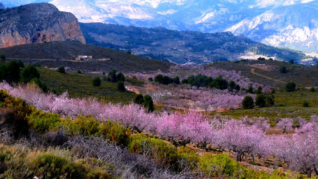 Sierra de Aitana | Les Haines / © Flickr