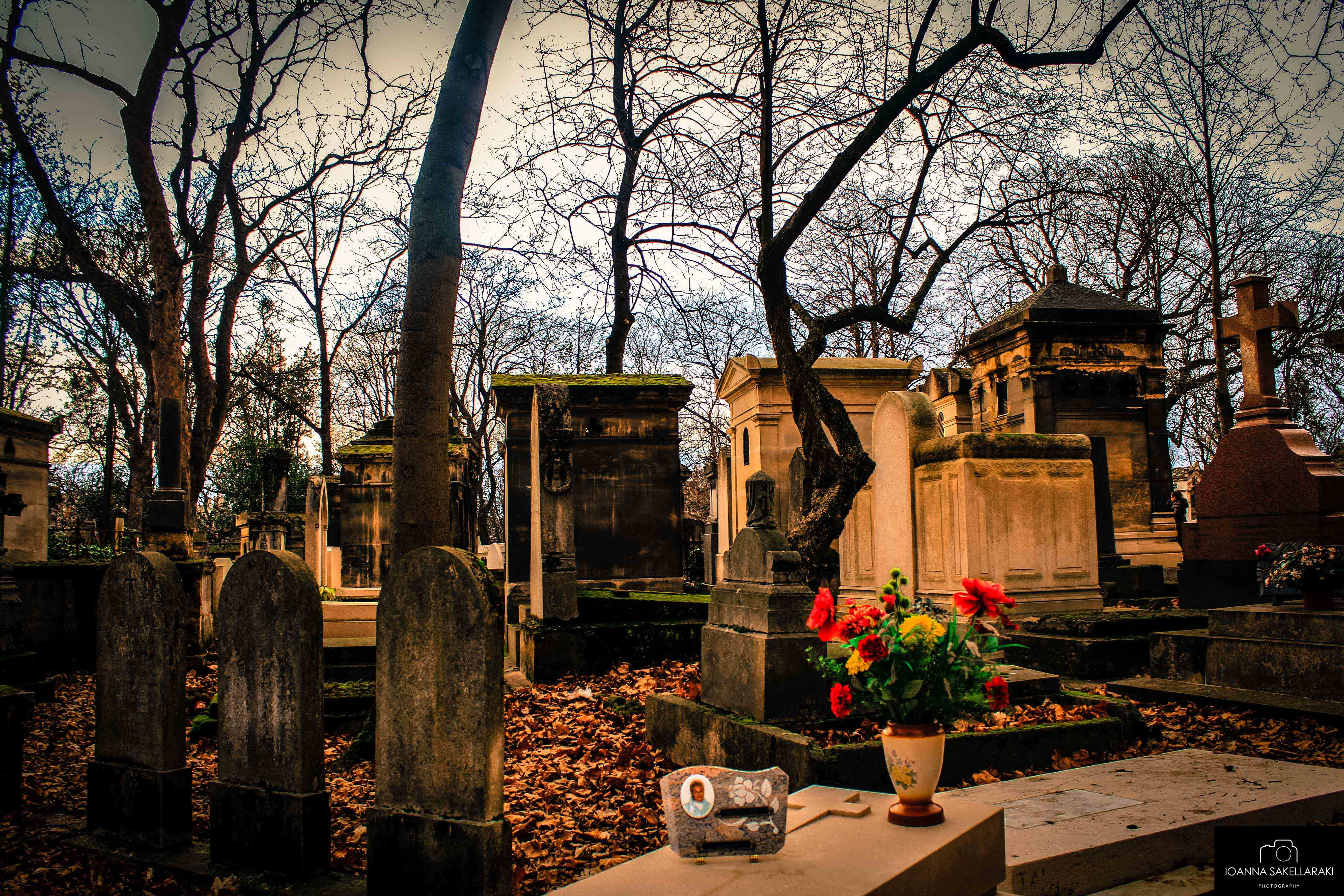 The Most Captivating European Cemeteries
