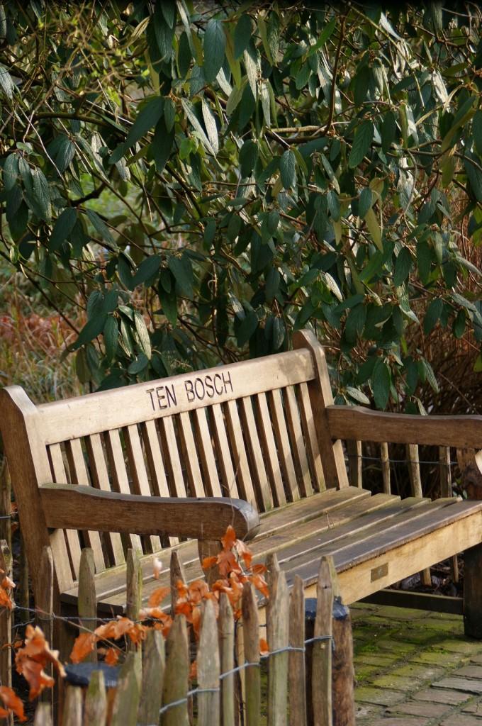 Characteristic-bench-in-Park-Tenbosch-Brussels-C-La-Kusman