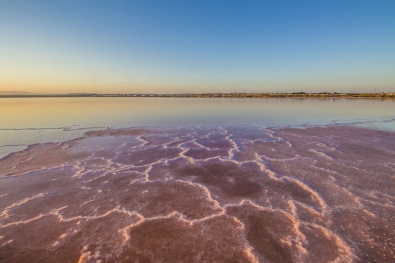 Spain S Pink Water Lake Las Salinas De Torrevieja