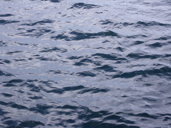 Lake Ontario Surface Closeup | © Ibagli