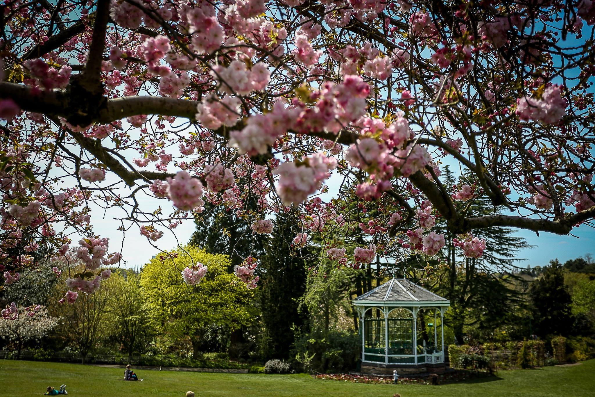 Birmingham Botanical Gardens | © Facebook