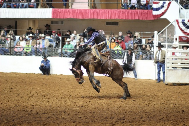 Ft. Worth Rodeo | © Lorie/Flickr