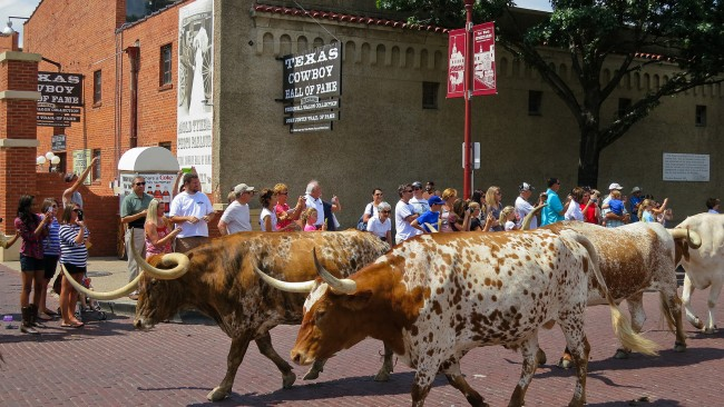 A Quick Travel Guide To Fort Worth Texas