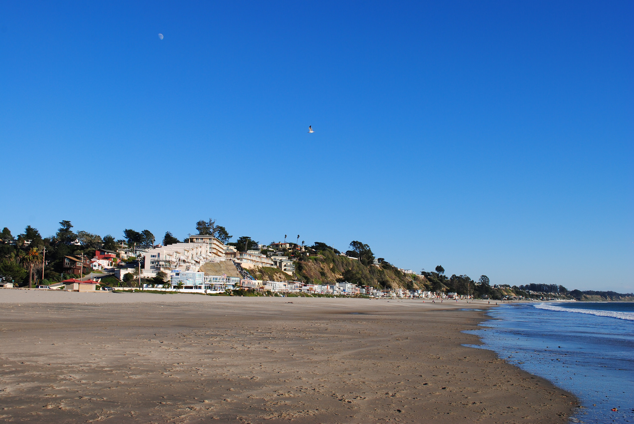 Outstanding Top Beaches In Santa Cruz California Download Free Architecture Designs Jebrpmadebymaigaardcom
