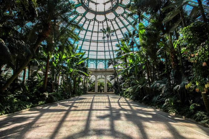The Royal Greenhouses of Laeken |©Ioanna Sakellaraki