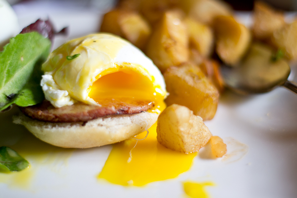 Egg München the top 10 places to brunch in munich bavaria