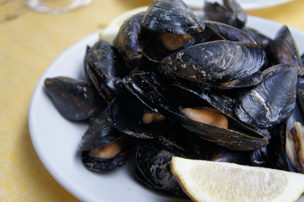 Mussels | © Chris/Flickr
