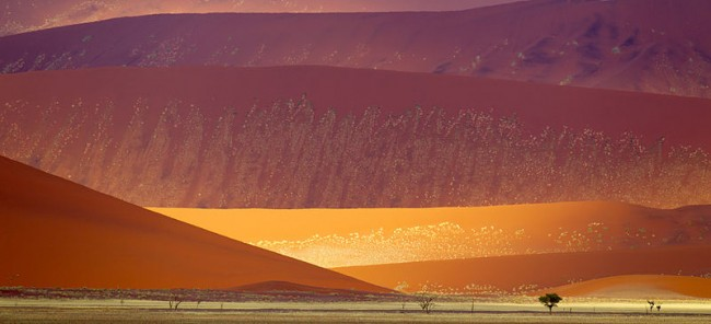 Namib-Naukluft National Park | © Yathin S Krishnappa/WikiCommons