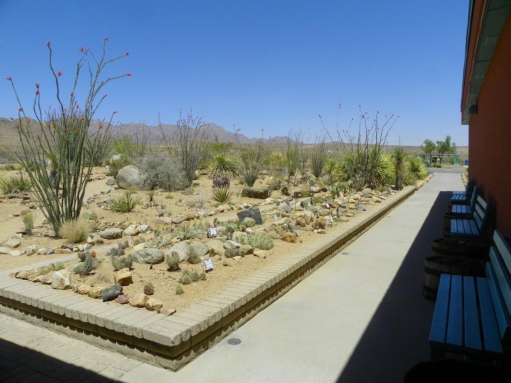 El Paso Museum of Archaeology | © Visit El Paso/Flickr