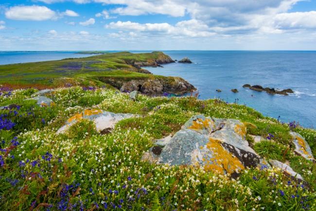 Saltee Island Great, Ireland | © Wynand van Poortvliet / Unsplash