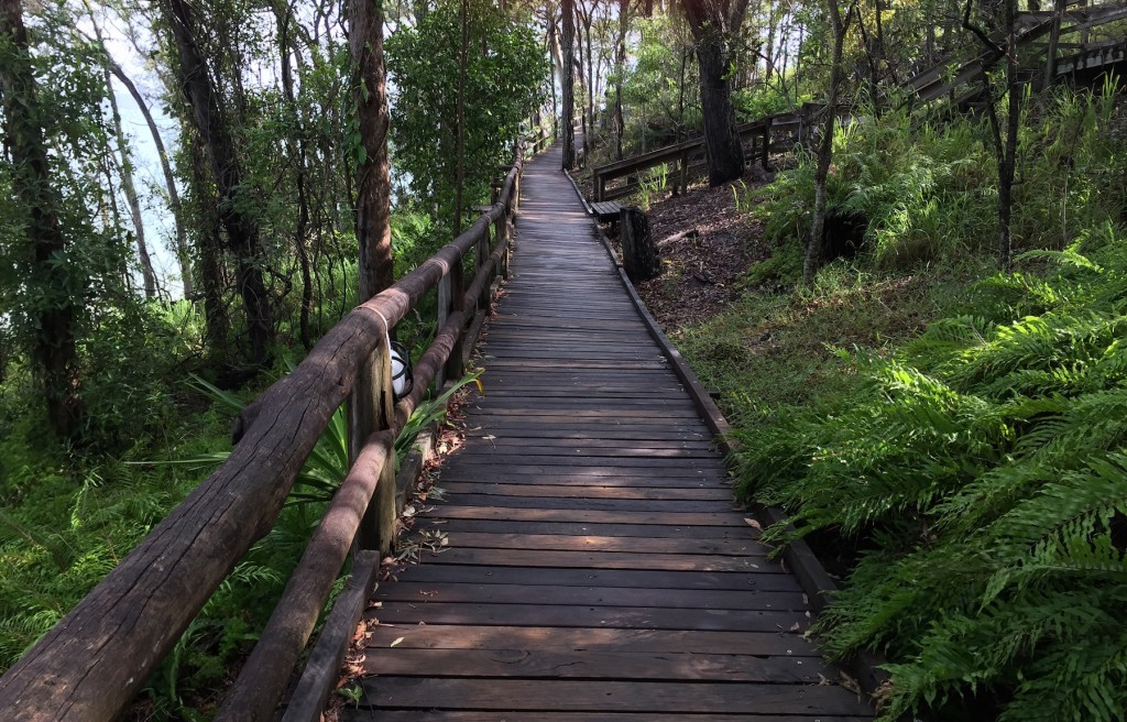 Noosa National Park Boardwalk / ©Sally James