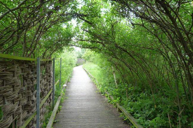 Greenwich Peninsula Ecology Park | © Gordon Joly / Flickr