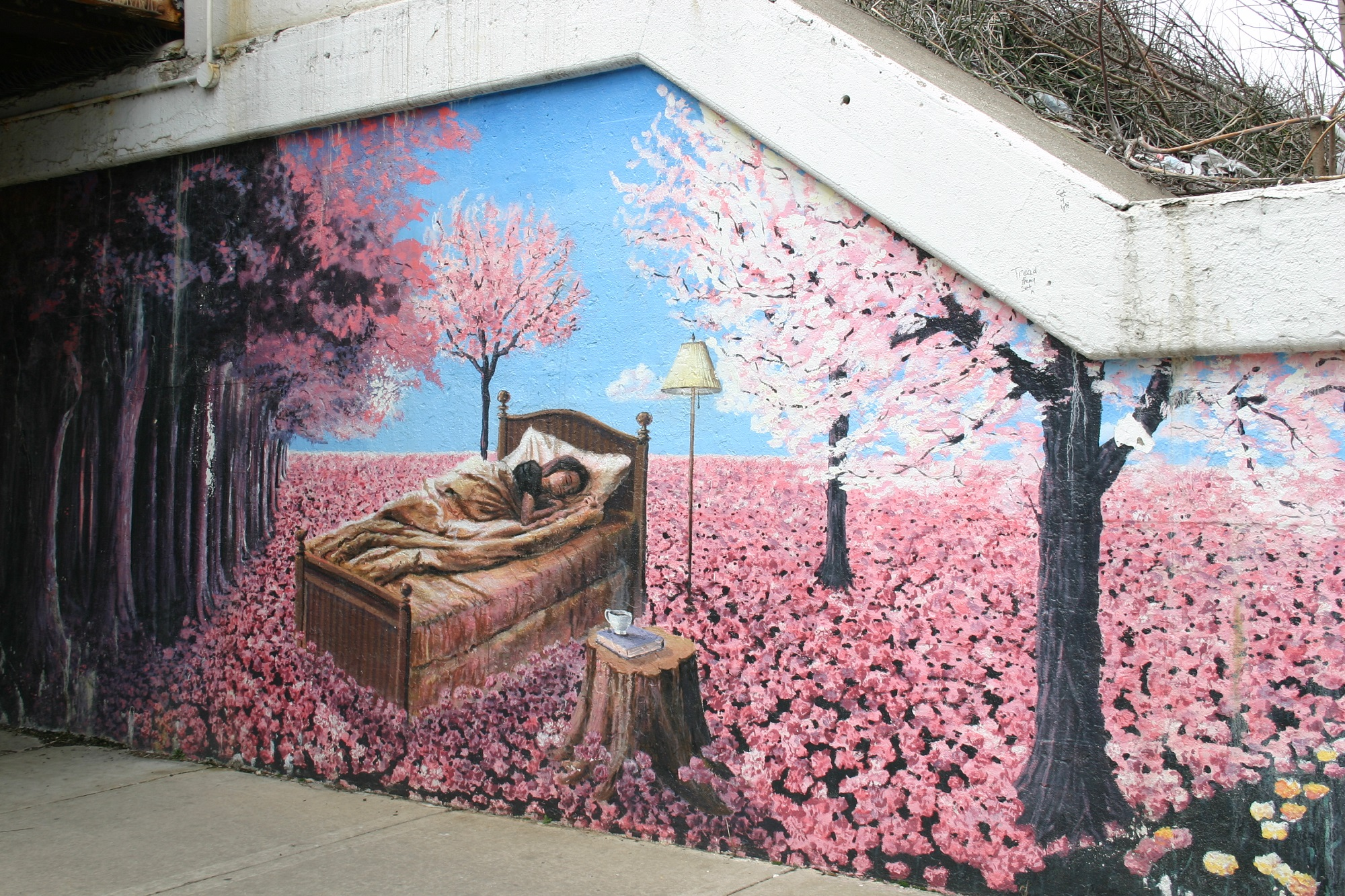 8 must see street murals in rogers park chicago for Ceiling mural in a smoker s lounge