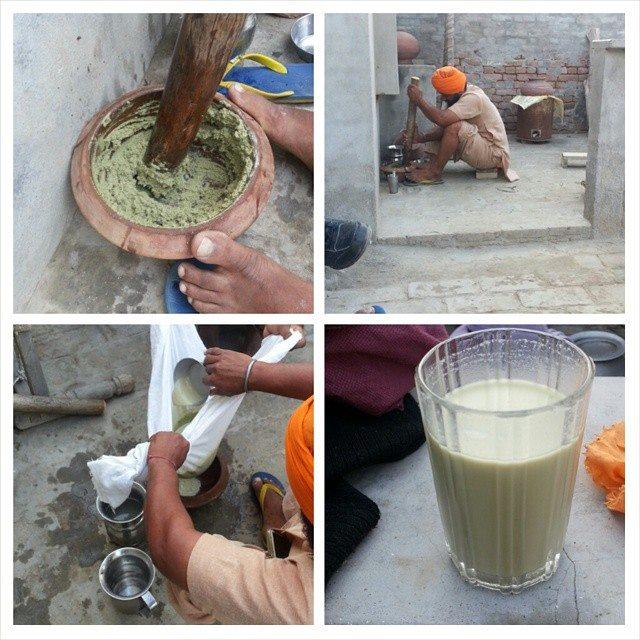 Bhang preparation in Punjab |©Marcus Prasad/Wikicommons