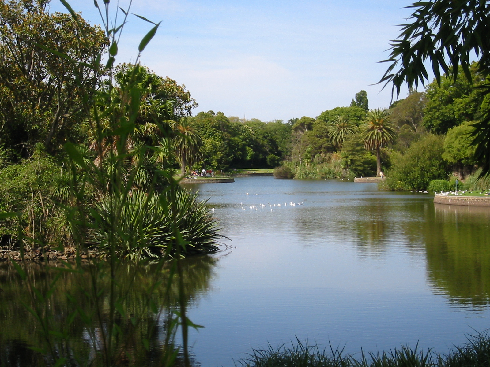 Melbourne s most scenic walking trails - What time does victoria gardens close ...