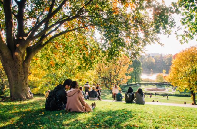 High Park, Toronto | © Benson Kua/Wikicommons