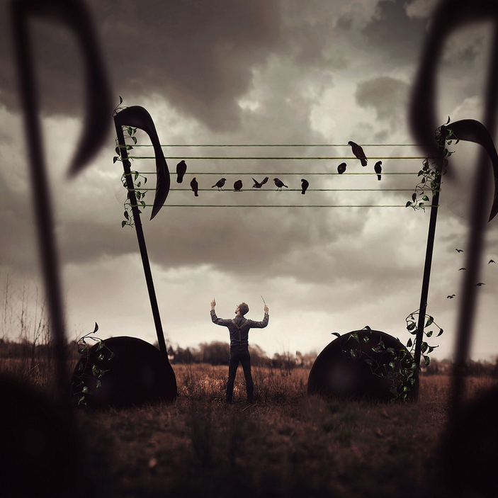 Where The Music Lives | © Joel Robison