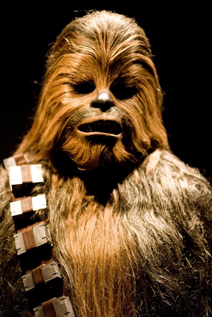 Chewbacca   ⓒ Alejandro Slocker/Flickr