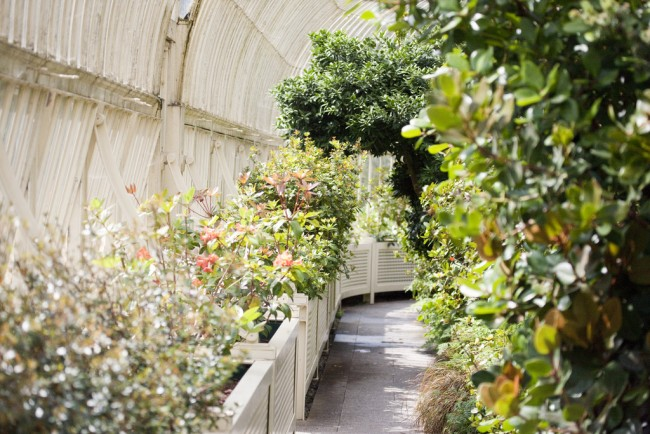 Botanic Gardens- Dublin | © William Murphy / Flickr