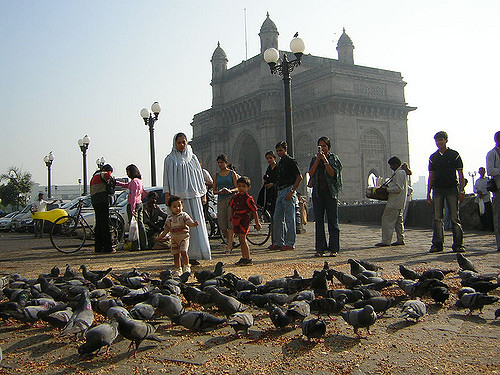 Pigeons are iconic in the area near the gateway © Flickr / Rakesh