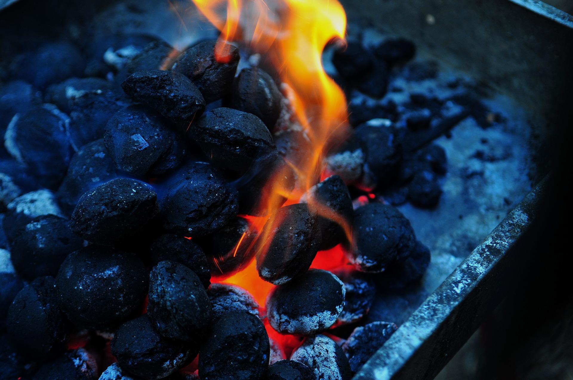 BBQ Charcoal   © tookapic/Pixabay