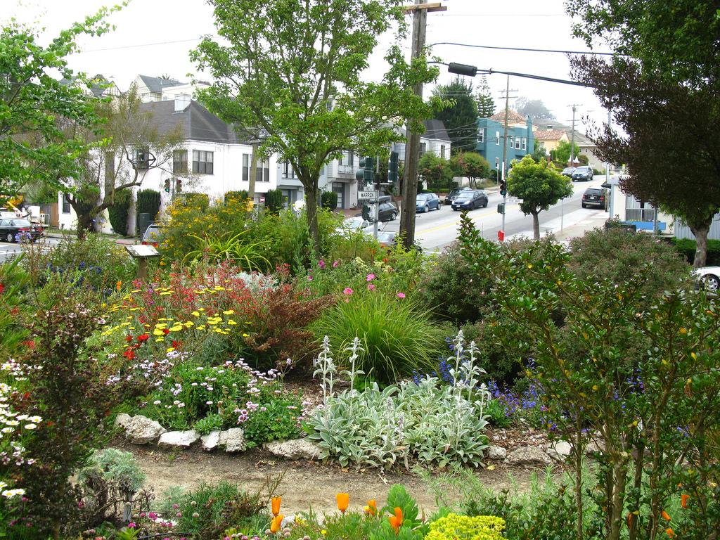 Garden for the Environment | © chuck b./Flickr