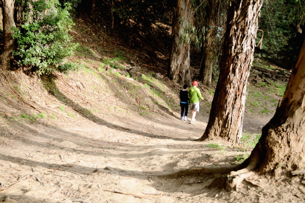 Claremont Canyon Regional Preserve © Sharon Hahn Darlin/Flickr