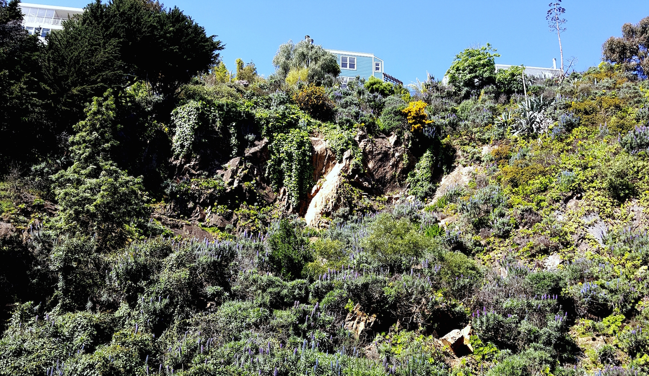 Quarry rock face on Sansome Street