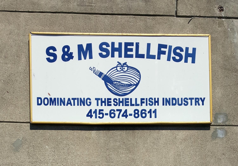 S and M Sheelfish
