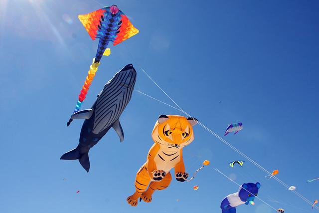 Beautiful Flying Kites | © Eva Rinaldi/Flickr.com