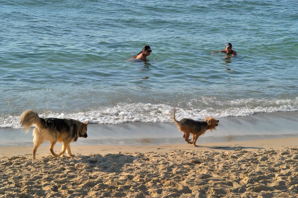 Tel Aviv |© Masa Israel Journey/Flickr