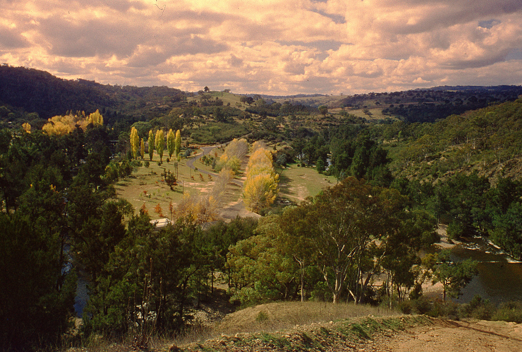 Cotter River Reserve at Wallace Collection | © Blue Mountains Local Studies / Flickr