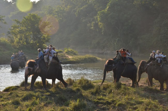 Elephant safari in Chitwan | © Chris Shervey/Flickr