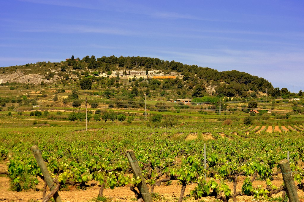 The Muntanya de Sant Pau outside Vilafrance de Penedès | © Angela Llop / Flickr