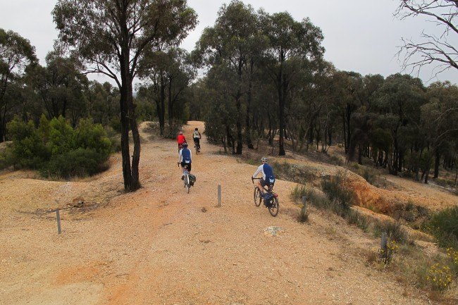 Bendigo bike tracks, ©Gavin Anderson, Flickr